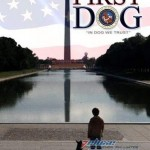 First Dog [DVDRip Latino]
