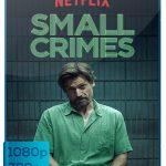 Delitos menores (2017) [Full HD 720p-1080p Latino]